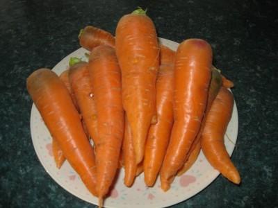 Carrots FGW